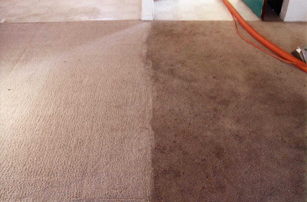 Вред от грязных ковров