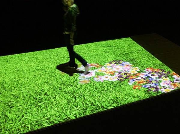 На фото – ковёр из цветов дома.