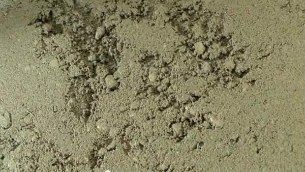 Неподготовленная поверхность в сочетании с тонким напольным покрытием проявит себя в течение нескольких месяцев в виде потертостей и дыр