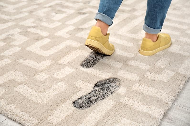 Насколько часто Вы ходите по ковру в обуви?