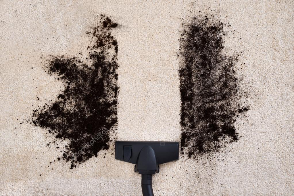 Место которое пылесосится - одно из наиболее грязных в доме