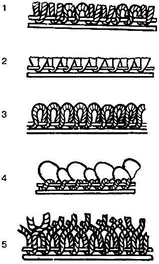 Схема плетений ворса: 1 — разрезные и неразрезные петли (комбинированный вариант); 2 — полностью разрезные петли (велюр); 3 — низкие неразрезанные петли; 4 — средние неразрезанные петли (бербер); 5 — полностью разрезанные высокие скрученные петли (фризе).