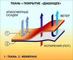 Структура дышащей мембраны.