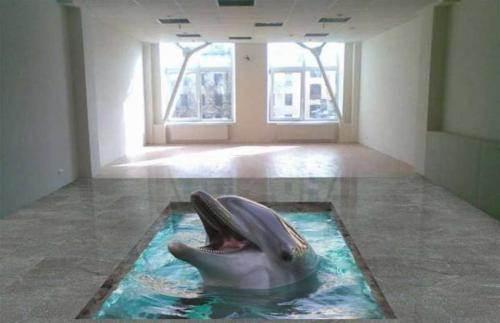 Трёхмерный дельфин на полу