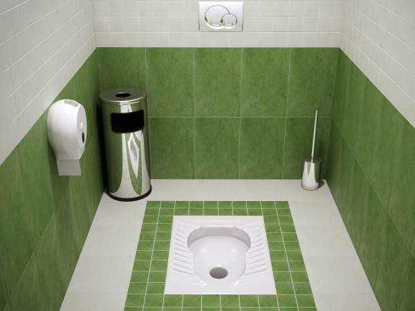 Туалет с унитазом - генуей.